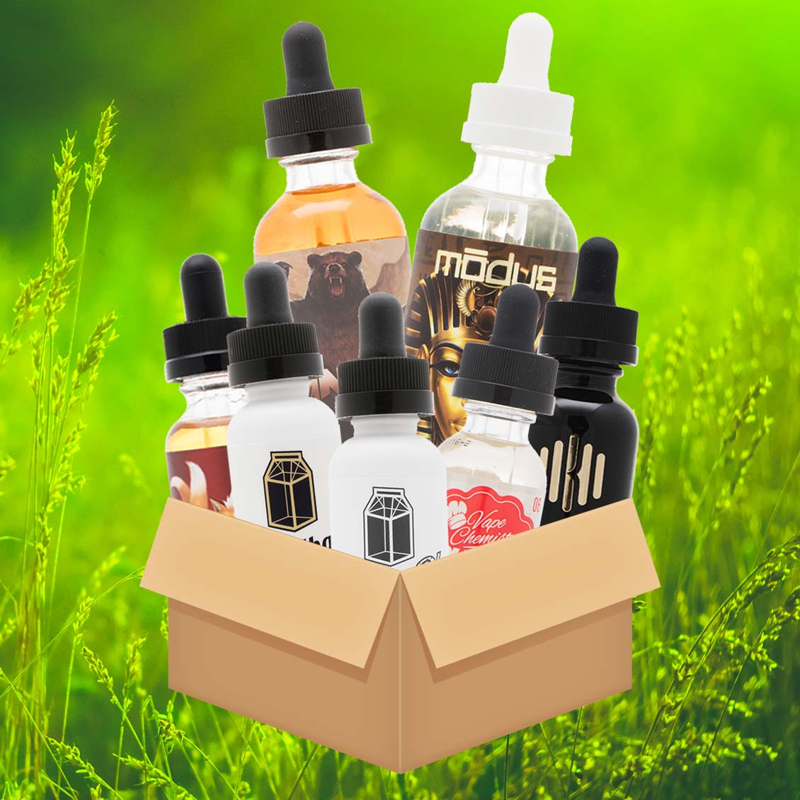 Premium Variety Bundle w/ ANML Unleashed, Modus, Milkman and More - 300mL! Photo