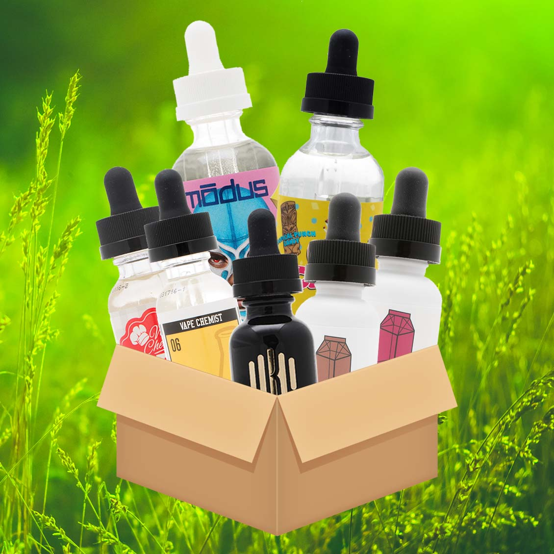 Premium Variety Bundle w/ Modus, Pop Clouds, Milkman and More - 300mL! Photo